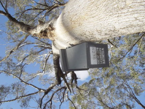 A Connecting Country nest box in the field