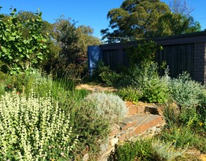 wildlife-friendly-gardens